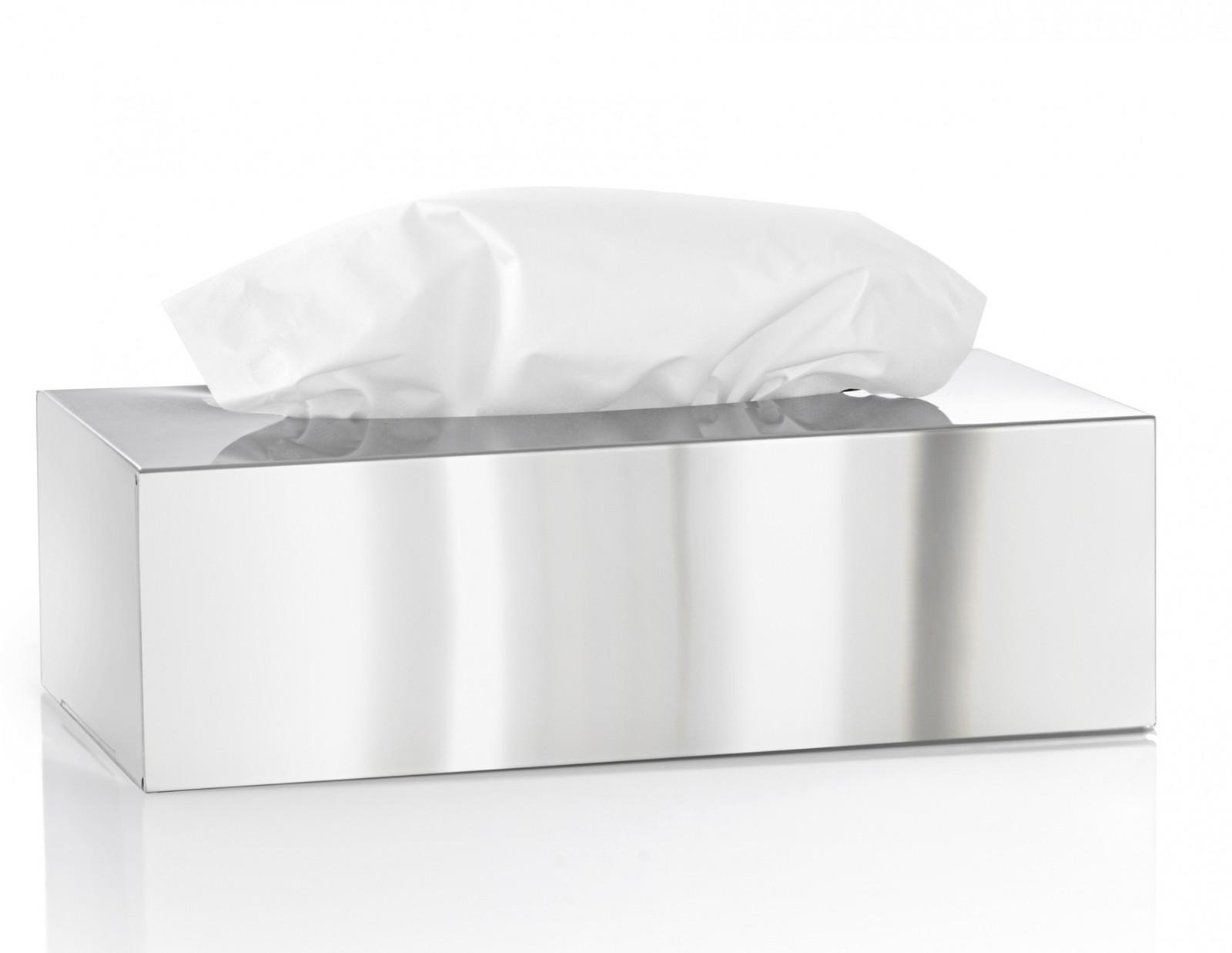 edelstahl poliert kosmetikt cherbox nexio kosmetiktuchbox von blomus 66660 bad bad edelstahl. Black Bedroom Furniture Sets. Home Design Ideas